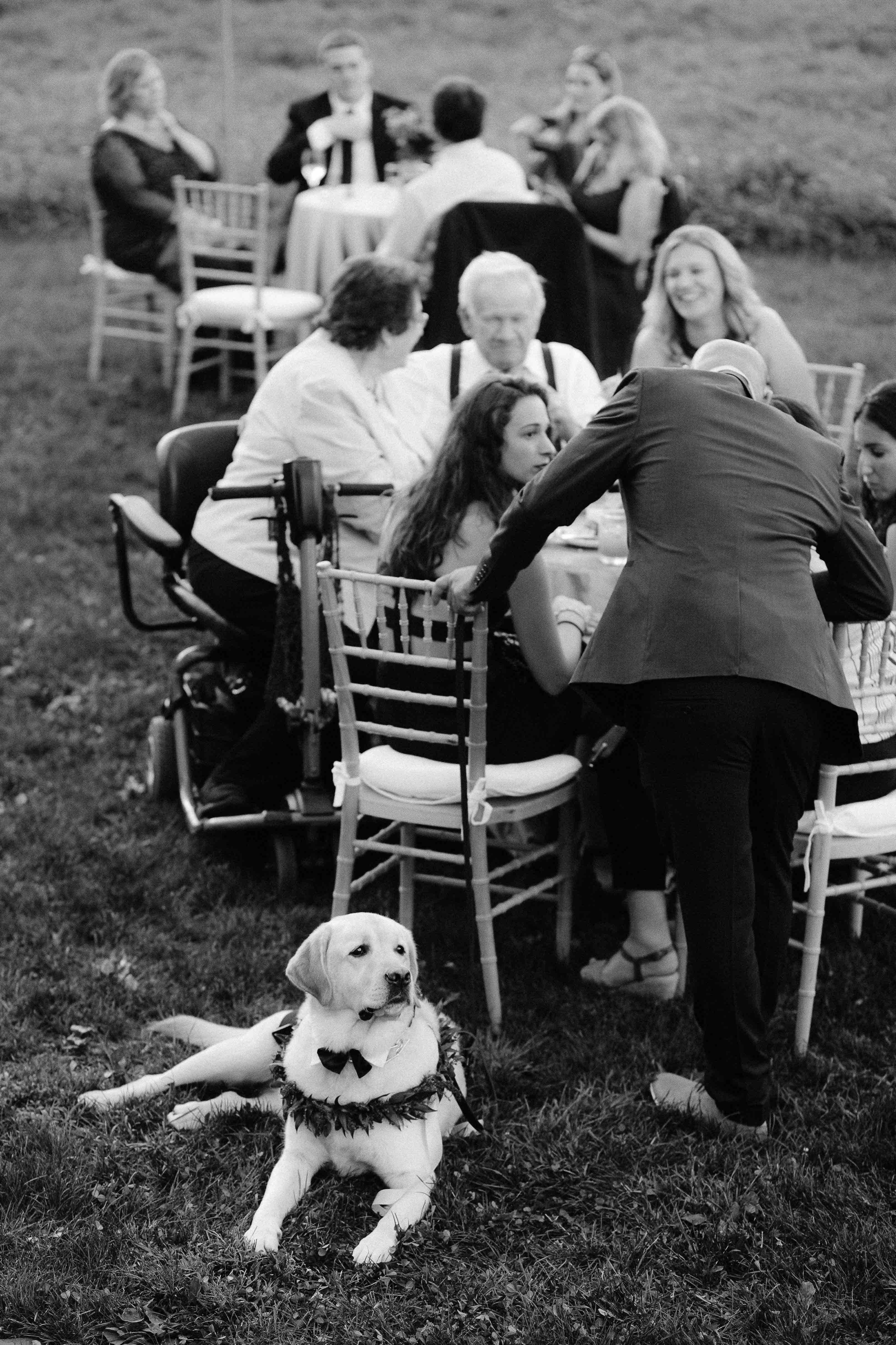 Hayfield-Catskills-Wedding-Best-Photographer-38